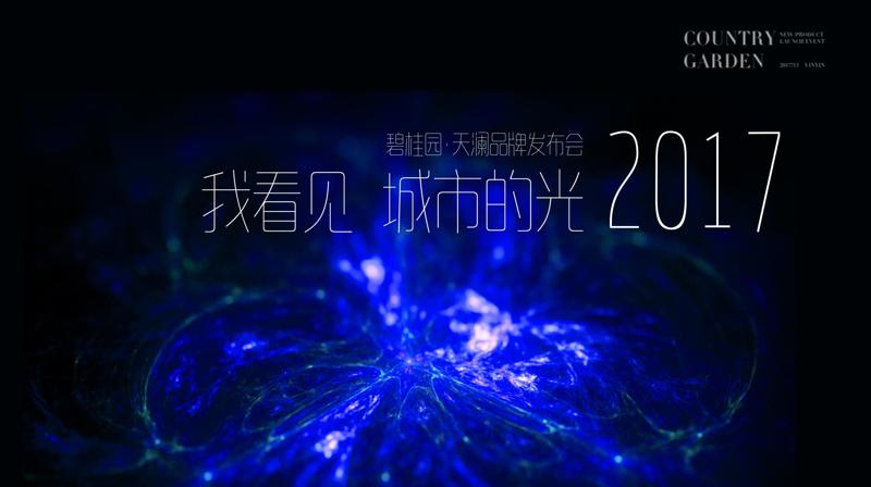 2017碧桂园梵高星空主题发布会方案