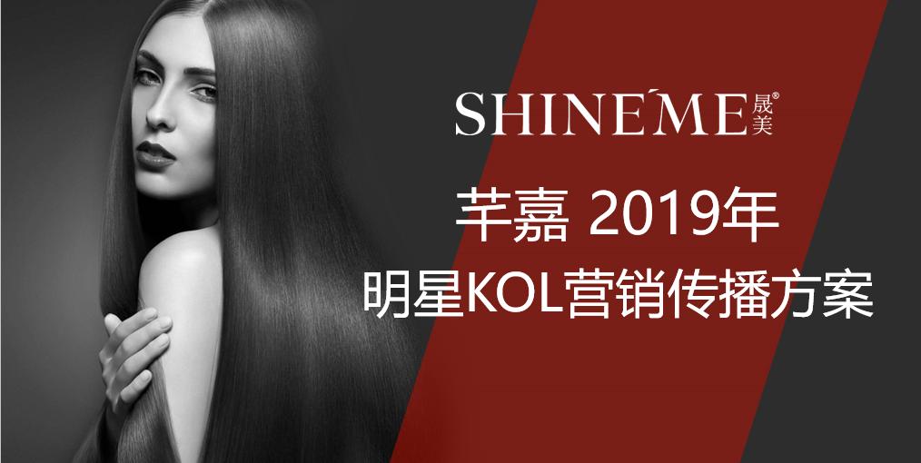 2019立白芊嘉明星KOL营销计划