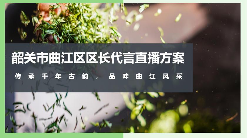 2020韶关区长代言直播活动策划方案