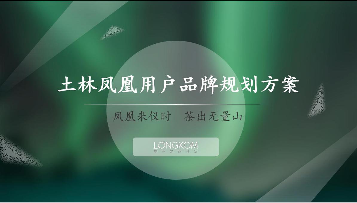 2020土林凤凰用户品牌战略规划方案